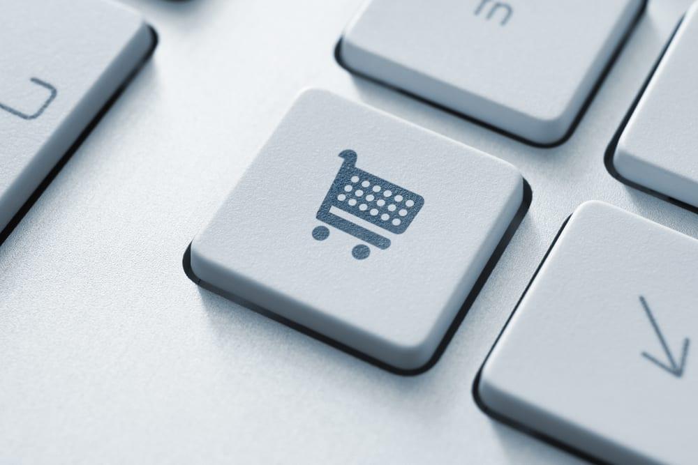 webshop-kosten